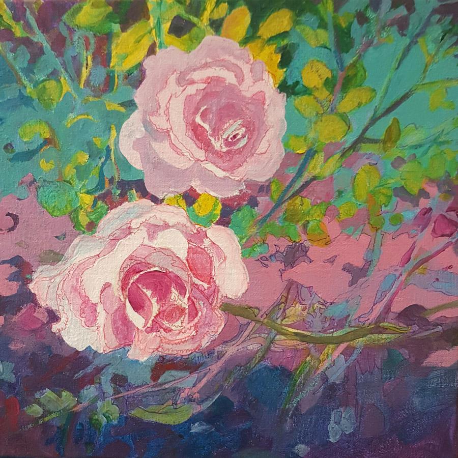 Summerville SC Roses